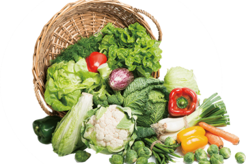 Healthy Diets, Nutrition and Health